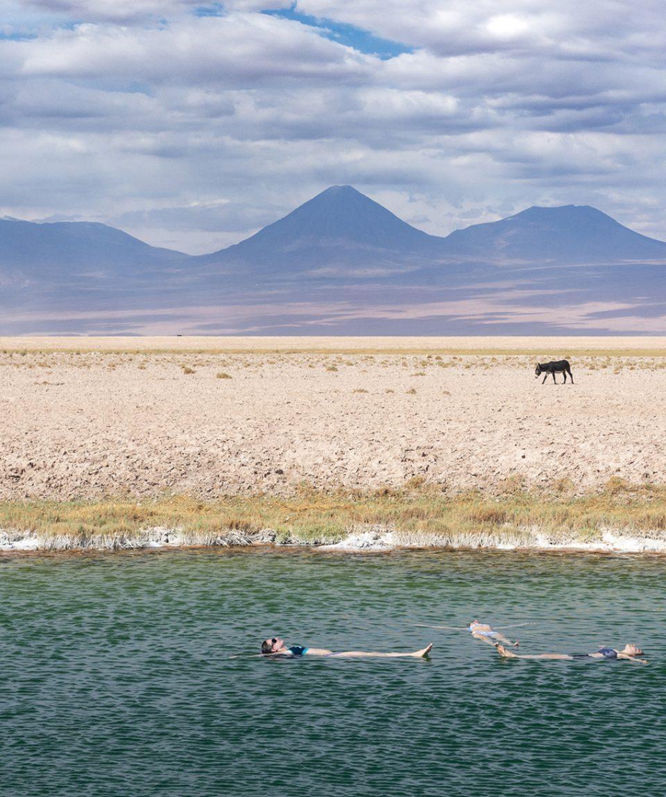 CapricornioExpediciones.com-San-Pedro-de-Atacama-Laguna-de-Tebenquiche_1080x1080_7195
