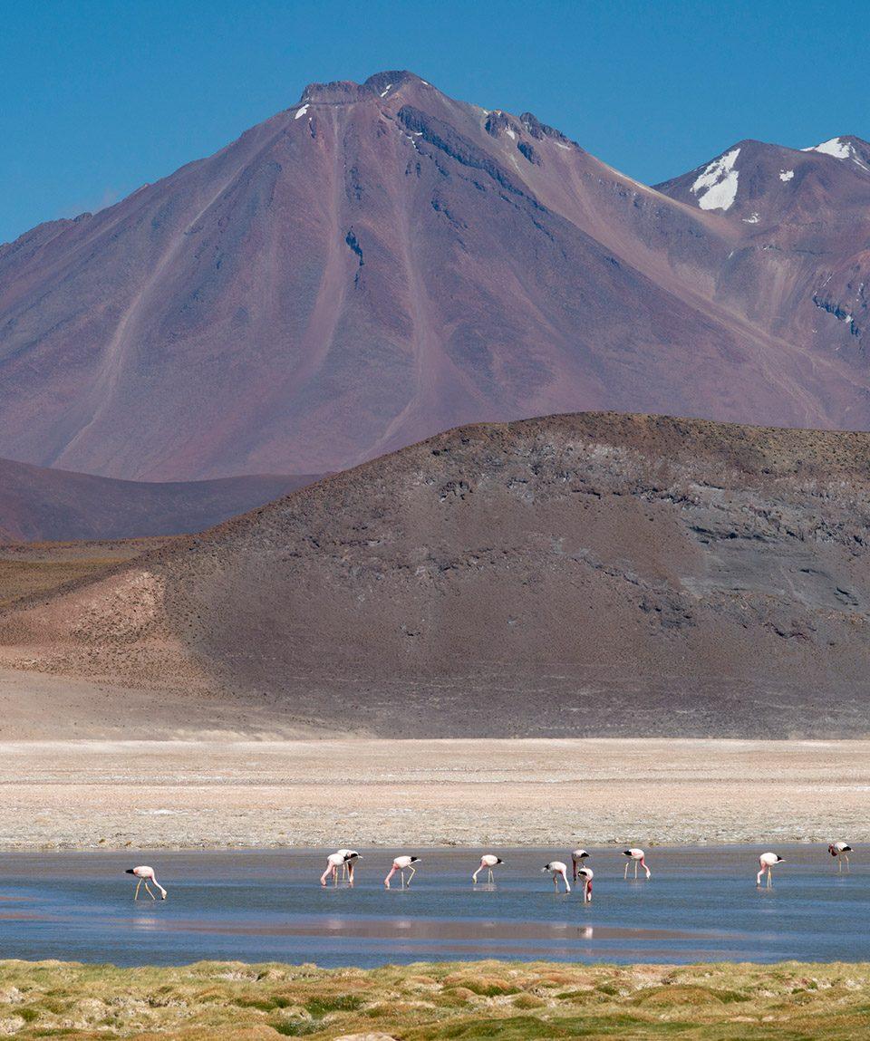 capricornioexpediciones.com-desierto-encantado-5d4n-2